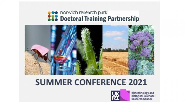 NRPDTP 2021 Summer Conference